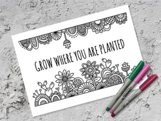 DIY-grow-where-you-are-planted