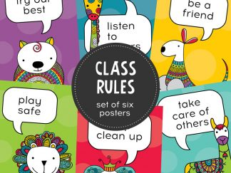DIY class-rules-hero